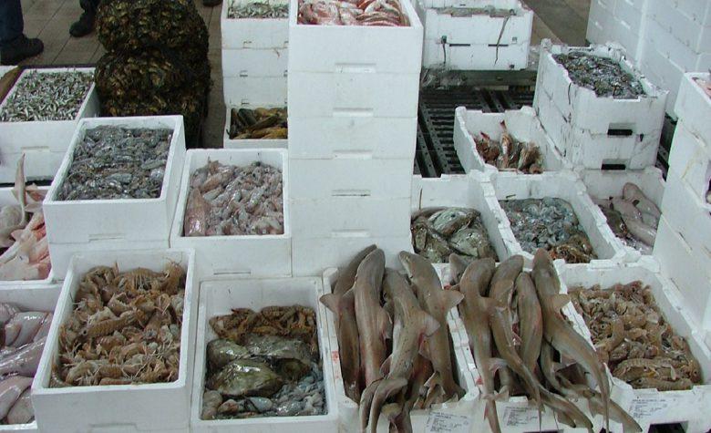 mercato ittico (foto google)