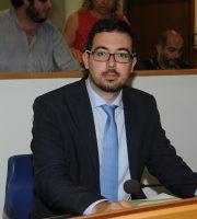 Stefano Muzi in consiglio