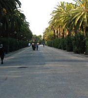 """Viale Buozzi, il """"corso"""" di San Benedetto, oggi un inutile spazio vuoto nell'angolo più suggestivo della città"""