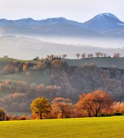 Marche (foto tratta da Il Blog che ti racconta l'Italia)