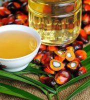olio-di-palma-dal-frutto-al-bottiglione
