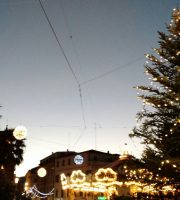 L'albero addobbato nei pressi di Piazza Matteotti