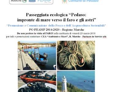Passeggiata Ecologica - Comune di Pedaso - Faro e Porticciolo