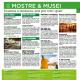 Mostre e Musei, la rubrica di Riviera Oggi Estate