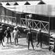 Stabilimento Bagni a San Benedetto, foto d'epoca