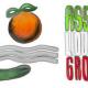 logo associazione lido degli aranci